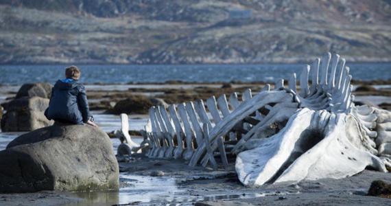 Leviathan: una bestia importada de Rusia