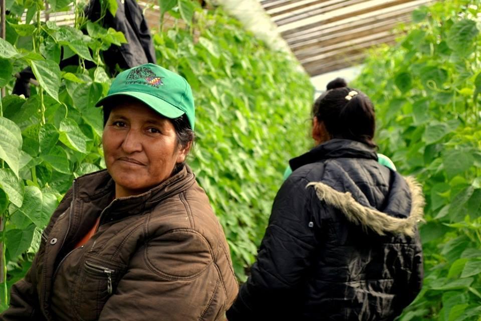 Emergencia para productores agrícolas: hoy Paro y Tractorazo