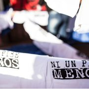 """Día Nacional de Lucha contra la Violencia Institucional: """"La salida es colectiva"""""""