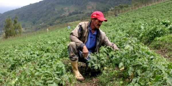 Venezuela: cuando la crisis es también oportunidad