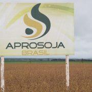 Brasil, sin patente para la soja Monsanto