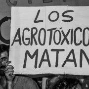 Gualeguaychú, un gesto esperanzador frente al glifosato