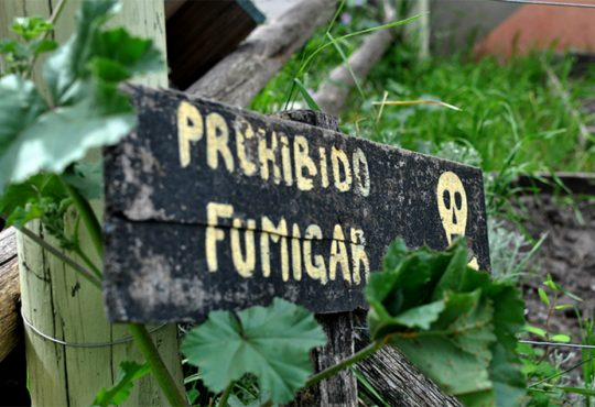 Histórico debate en FAUBA: soberanía alimentaria o negocios