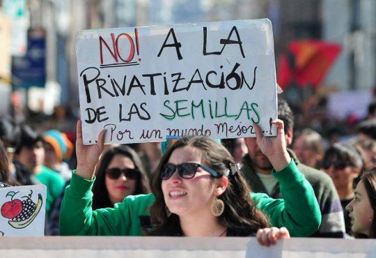 Contra la ley de privatización de la semilla