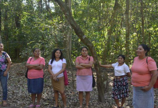 Copán: la defensa del territorio, los cuerpos y los espacios políticos antipatriarcales