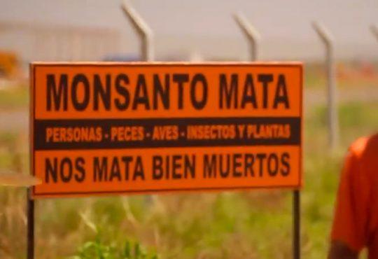 Monsanto-Bayer, Marcha Mundial contra la empresa de muerte