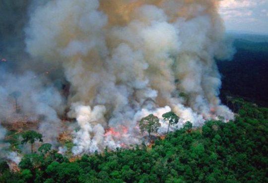 El humo de los incendios criminales en la Amazonía se propaga por todo el continente