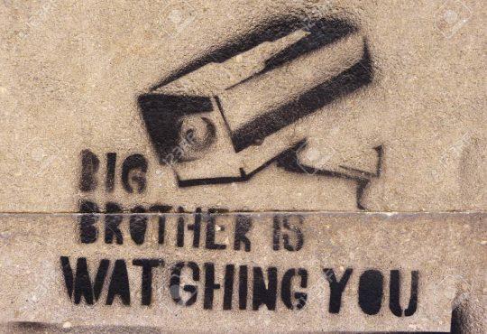 Cyber mundo: los desafíos de una vida digital