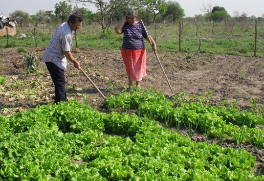 1° Congreso Argentino de Agroecología, otra agricultura es posible