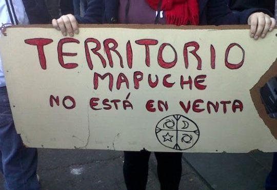 La comunidad mapuche Lof Paicil Antriao lucha contra el despojo de sus territorios