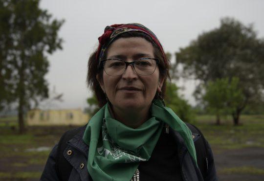 """Viviana Catrileo: """"En Chile, el Estado tiene que reconstruirse"""""""