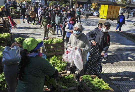 La UTT y los verdurazos: el campo solidario que alimenta